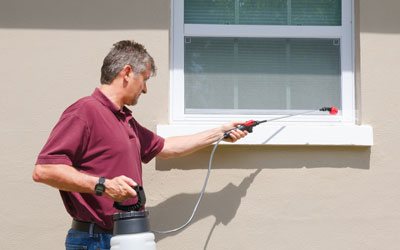 Why Choose Professionals For Pest Control Service?